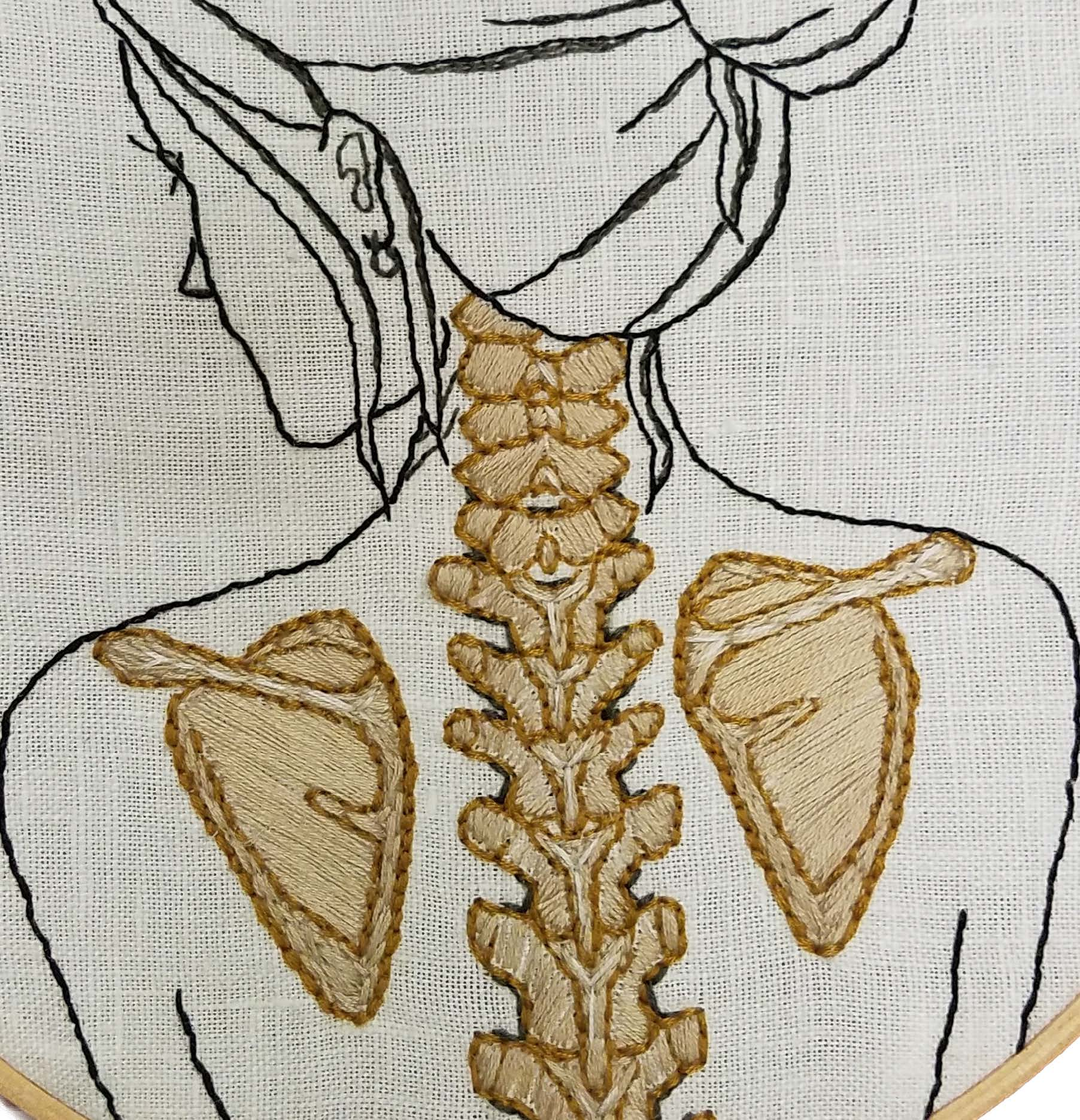 Woman, spine and scapulae