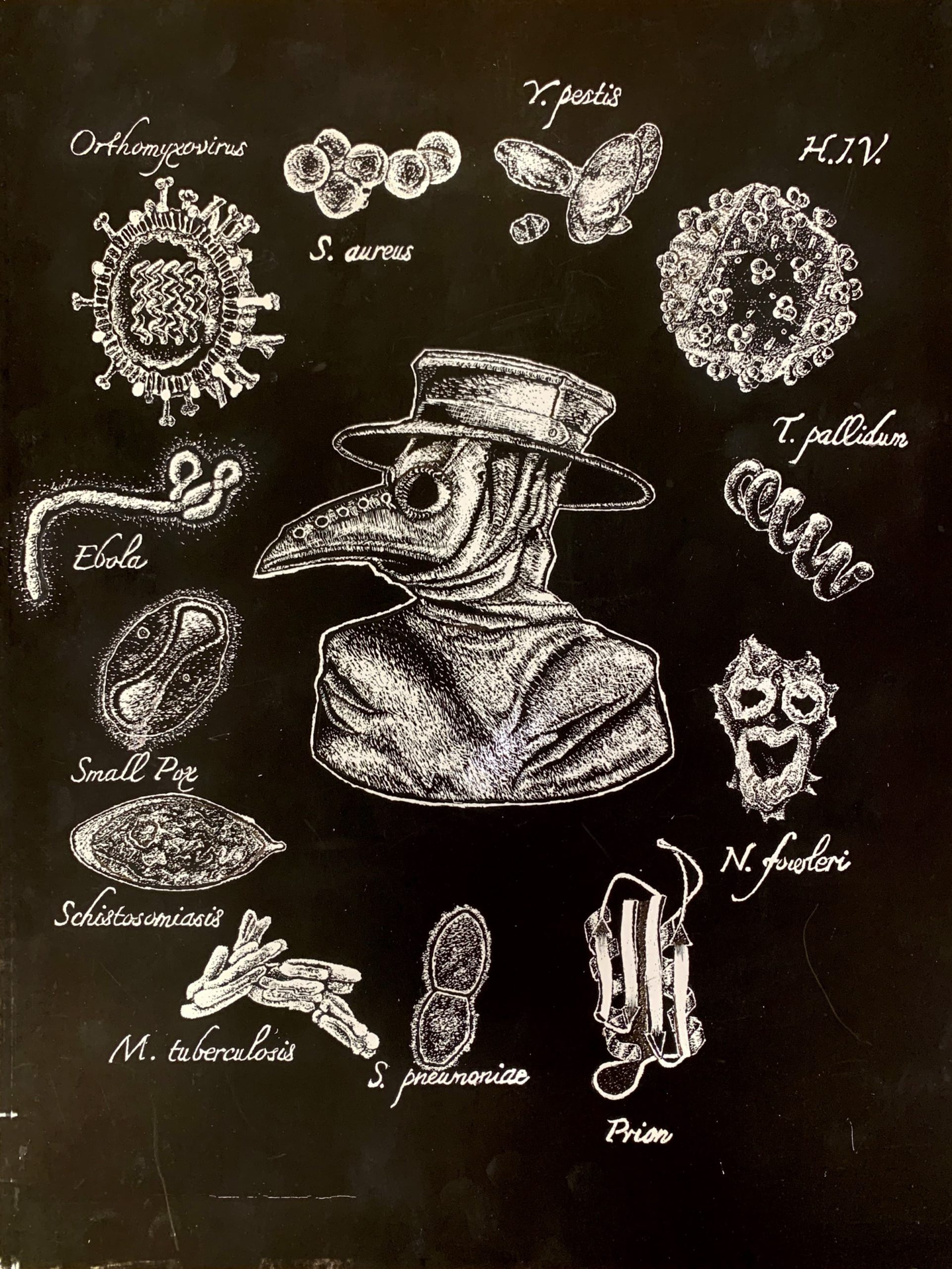 """Pathogens: Our Best Frenemies"" - drawing,scratchboard by Michael Hofer"